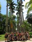 Paisagistas - Estudo no Jardim Botânico do Rio de Janeiro