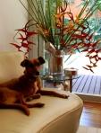 Cliente Jardim Prudência - Todos desfrutam