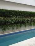 Cliente Villa Lobos - jardim emoldurando a piscina
