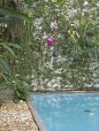 Ponto focal com orquídea