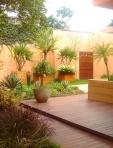 Cliente Cidade  Universitária - Mini-pomar entre casas