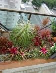 Cobertura Itaim - Canteiro Tropical
